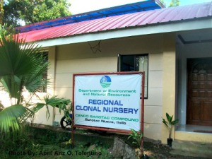 The 0.5 hectare Regional Clonal Nursery of DENR situated in Pobalcion, Barotac Nuevo, Iloilo which operated in 2012.