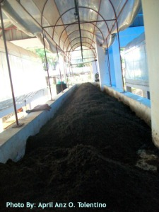 Coco Coir Dust is mixed with another 50% River sand.